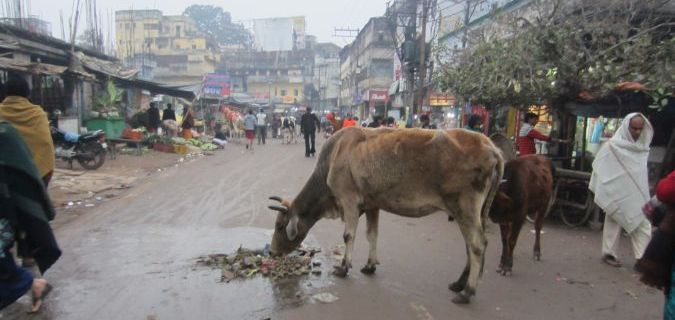 centrum Varanasi