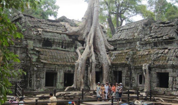 Świątynia Ta Prohm w Angkor