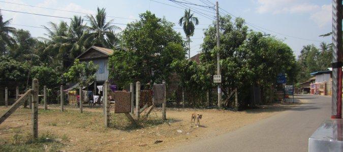 W drodze do Wat Banan